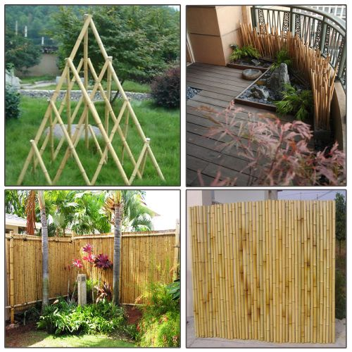 BAMBOO CANES 4FT (SI-BCANE102)