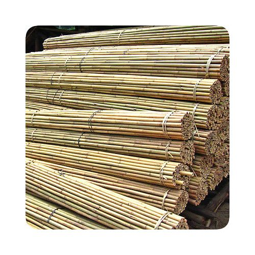 5FT BAMBOO CANES (SI-BCANE103)